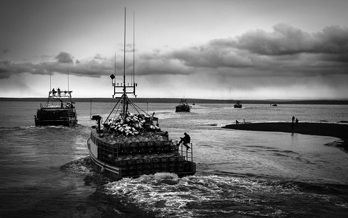 This season's last boats to fish lobster in Alma, NB | by dassouki82