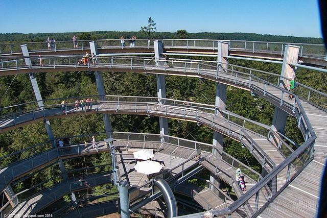 Baumwipfelpfad Turm oben