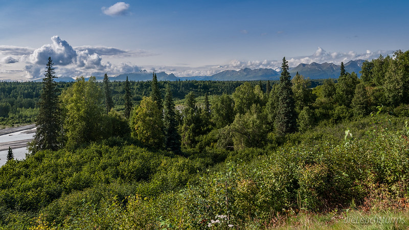 Denali South View