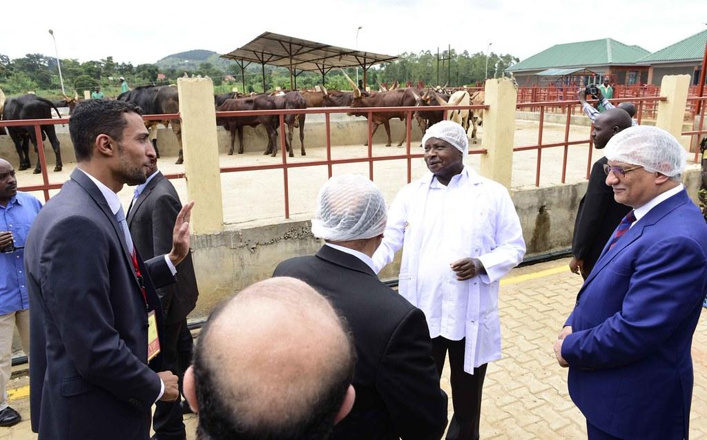 Museveni Beef