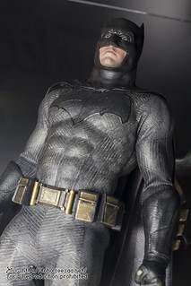 BATMAN100_HotToys_2-139