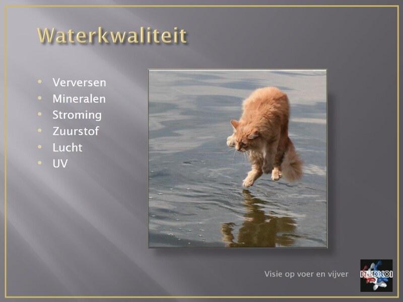 Lezing Mike van Zijl