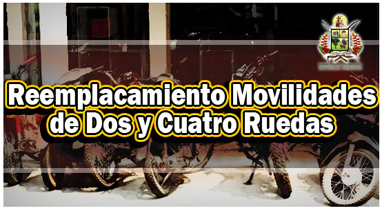 reemplacamiento-de-movilidades-de-dos-y-cuatro-ruedas