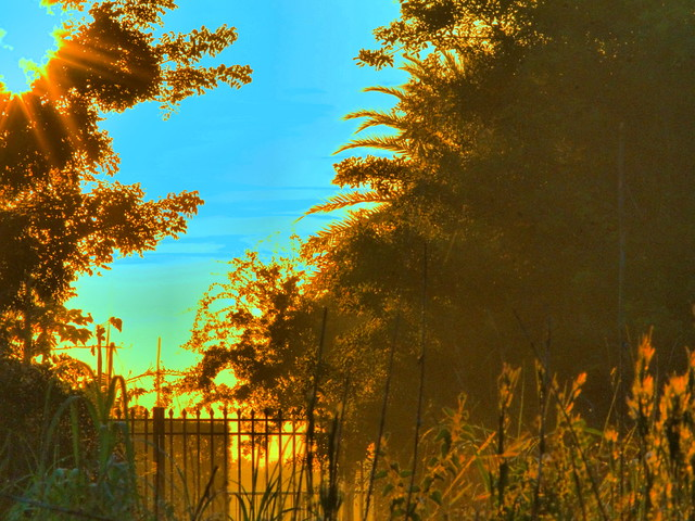 Harbour Lakes Gate CROP 20160919