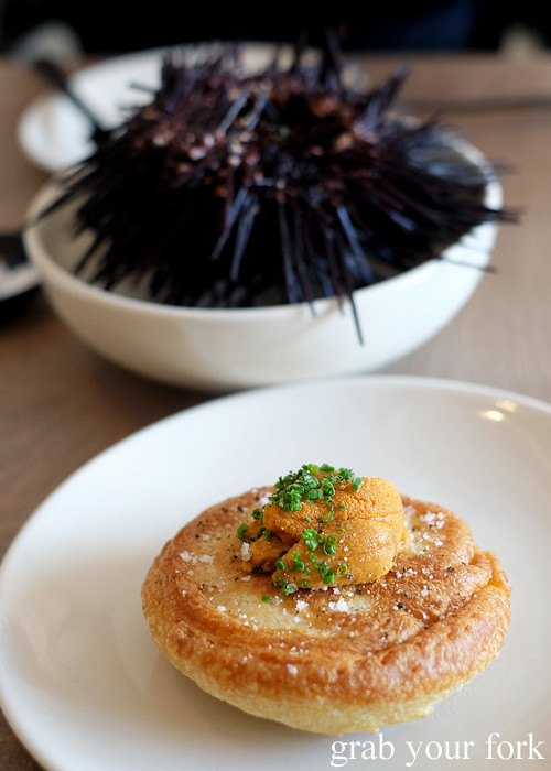 Eden sea urchin on crumpet at Saint Peter by Chef Josh Niland in Paddington Sydney