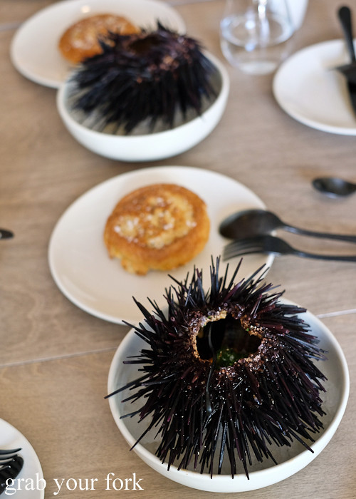 Eden sea urchin crumpet at Saint Peter by Chef Josh Niland in Paddington Sydney