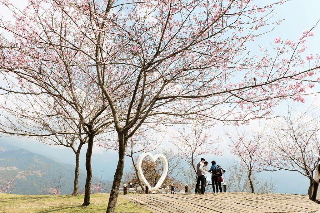 cingjing-farm-heart-taiwan