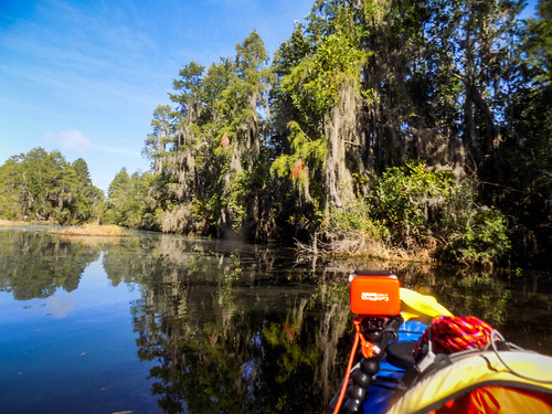 Lowcountry Unfiltered at Okefenokee-225