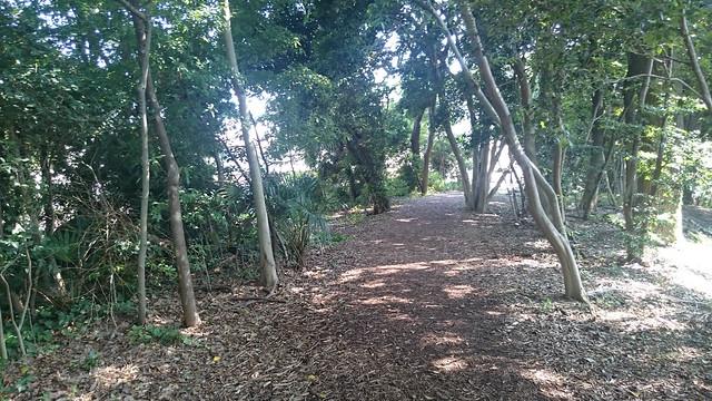 加木屋緑地