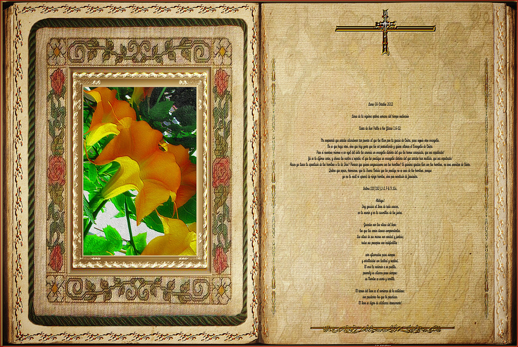 Resultado de imagen para Gálatas (1,6-12)