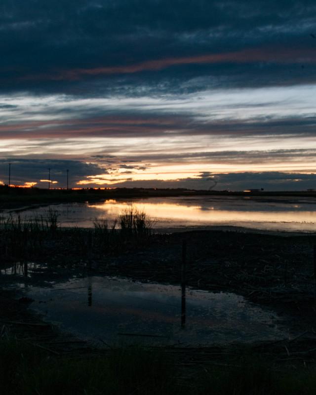 Sunset Slough