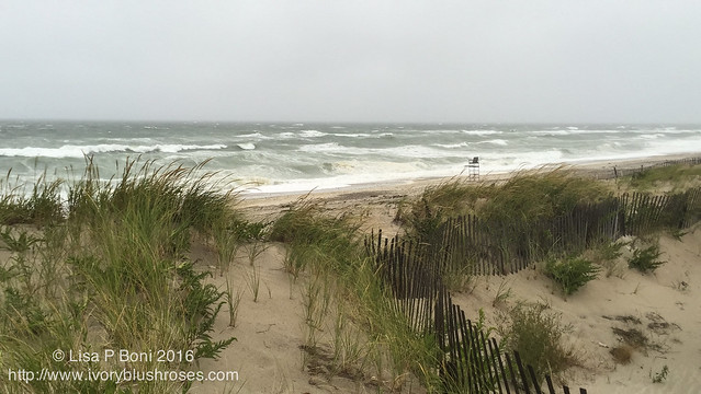 Sandy Neck Rough Surf from Hermine