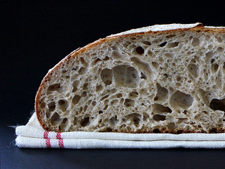 Miche Crumb | by PiPs75