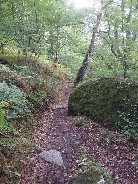 Bridlepath to Pethybridge