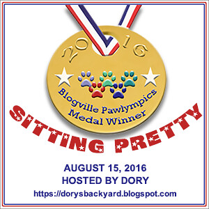 Sitting Pretty, Dory Medal