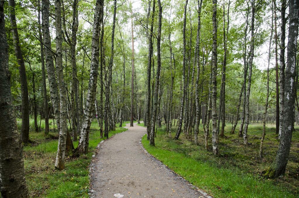 Parc national de Slovinie