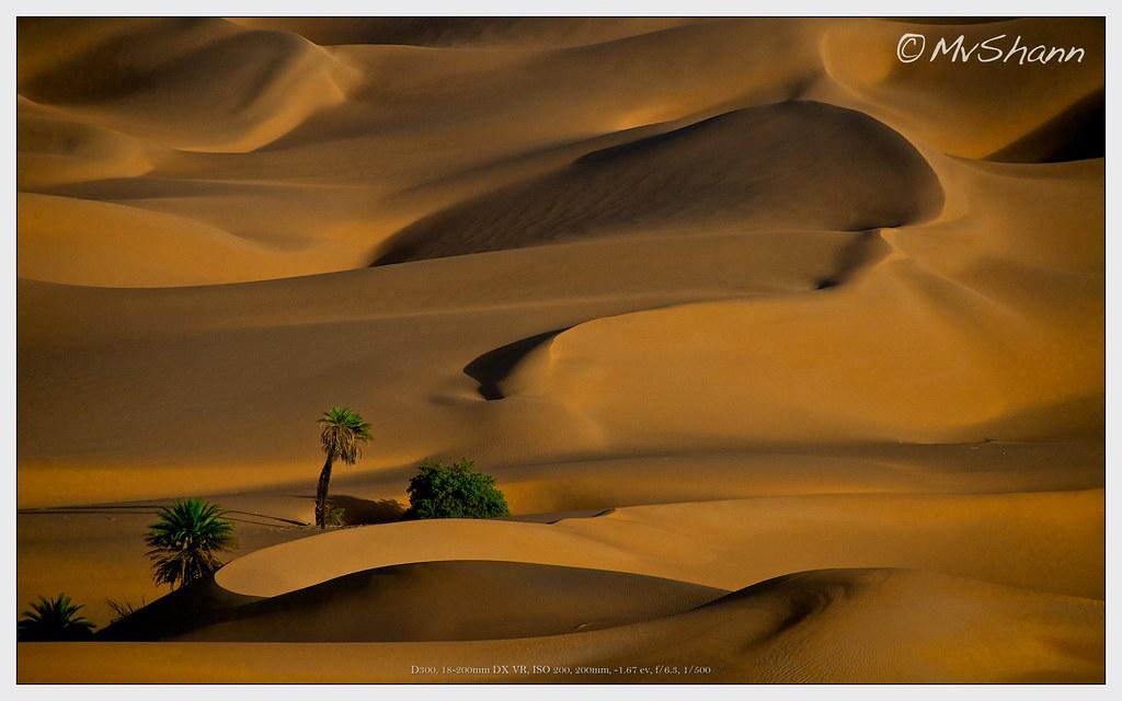 Sand Dunes near Ubari, Libya