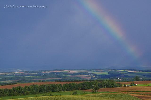 虹とコラボ