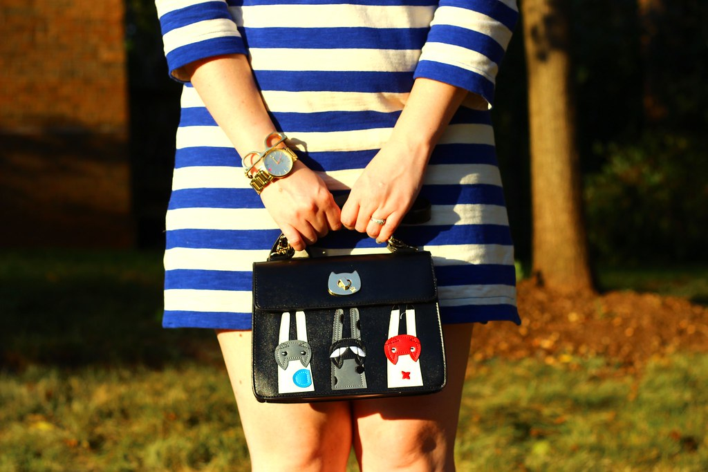 Striped Tunic and Cat Purse (4)