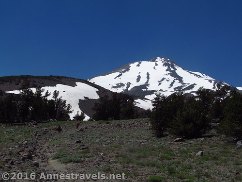 Descending toward the lower reaches of the jeep road near the Brewer Creek Trail on Mt. Shasta, Shasta-Trinity National Forest, California