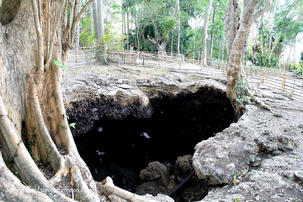 Monfort Bat Santuary in Samal Island