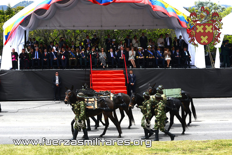 Ejército de Colombia 29122528523_8f2b9de960_c