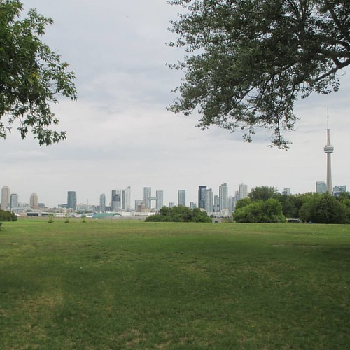 The skyline beyond #toronto #torontoislands #skyline #hanlanspoint #skyline