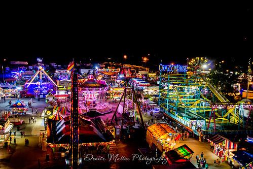 Wilson County Fair 2016