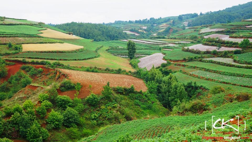 Yunnan_0027