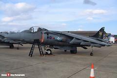 ZD407 - P36 - Royal Air Force - British Aerospace Harrier GR7 - 041010 - Duxford - Steven Gray - DSCF3199