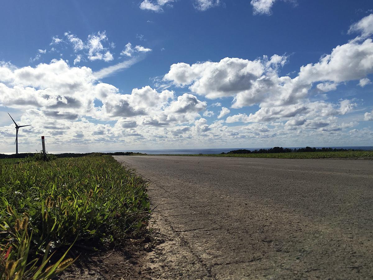 北海道みたいなイメージの農場