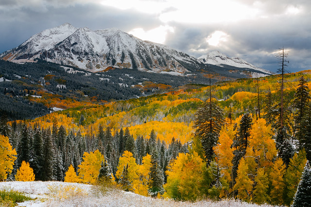 Colorful Colorado Fall - Kebler Pass