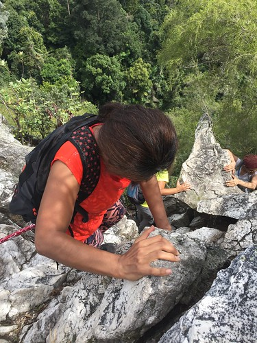 Jungle Janes at Tabur West