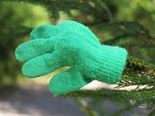 Green Mitten Tree