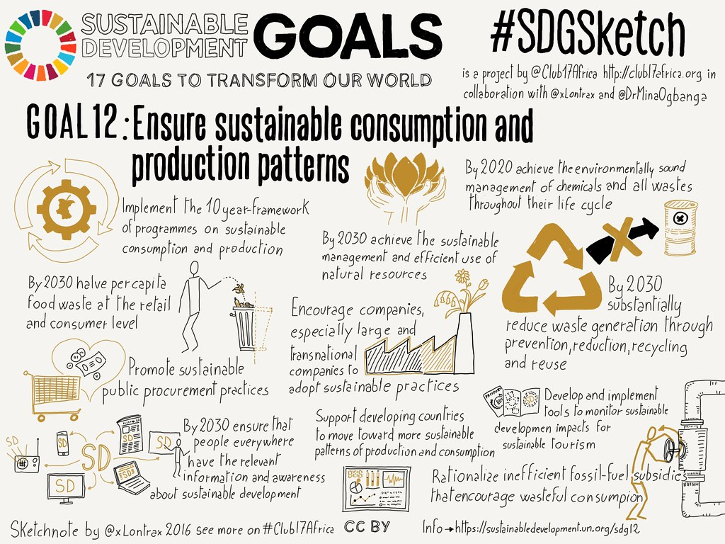 Goal 12. Responsible Consumption and Production