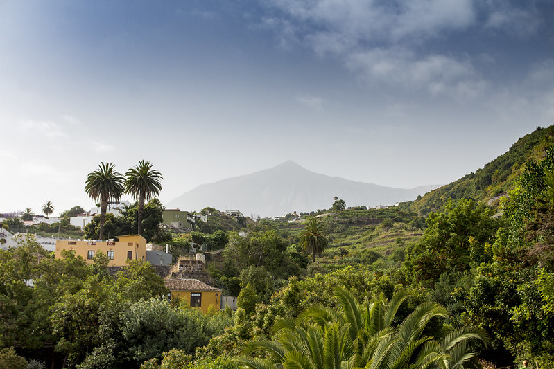 Teide landscape from Parque del Drago, Icod - Tenerife