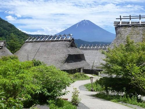 jp16-Fuji-Saiko-Village (12)