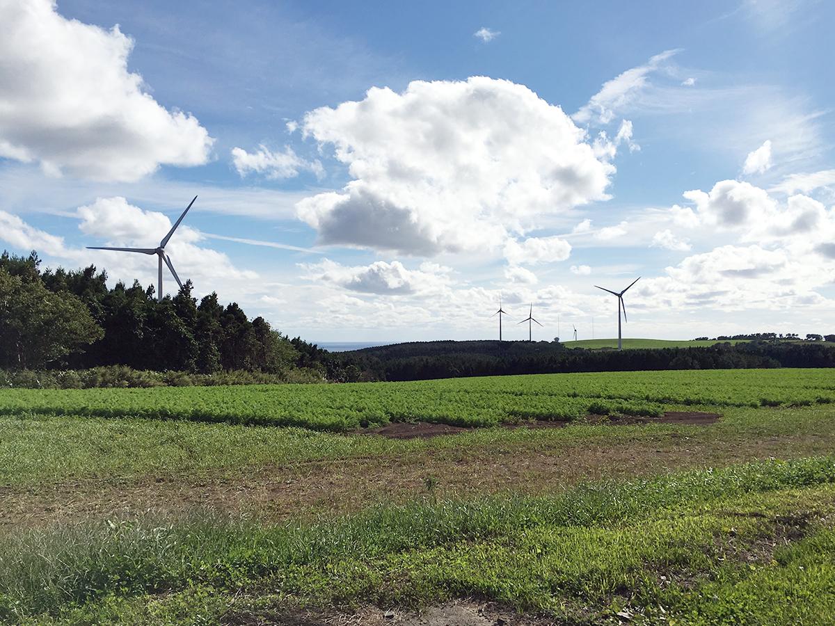 風力発電の風車が作る景色