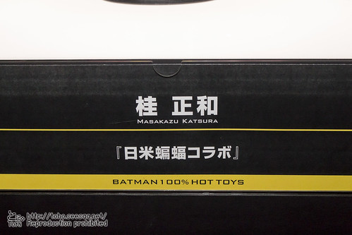 BATMAN100_HotToys_2-637
