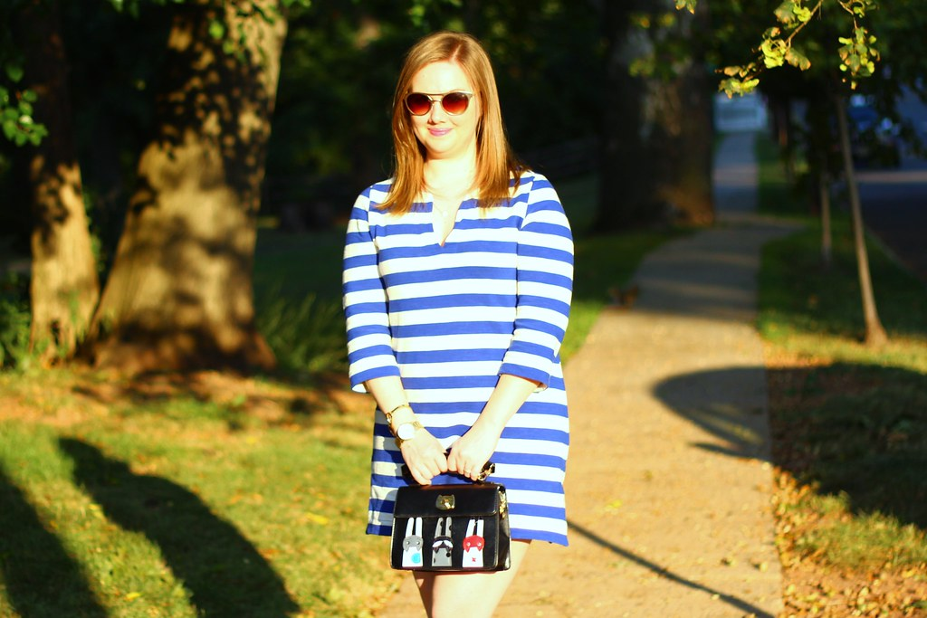Striped Tunic and Cat Purse (2)