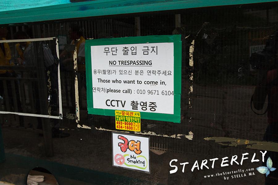 stellama_seoul_yong-ma-land_2