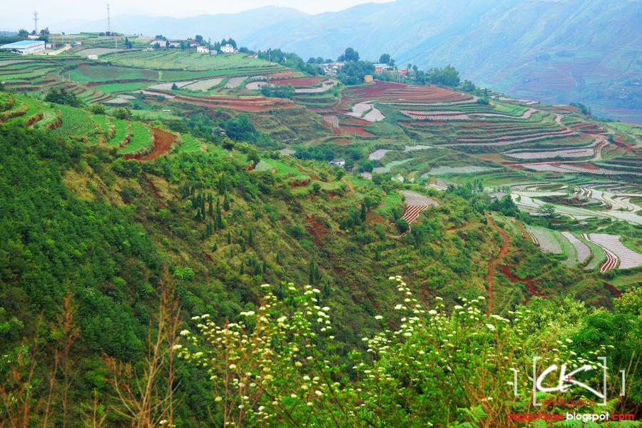Yunnan_0029