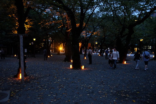 Miraitoterasu lantern