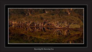 Knowing Me Knowing You | by EmeraldImaging