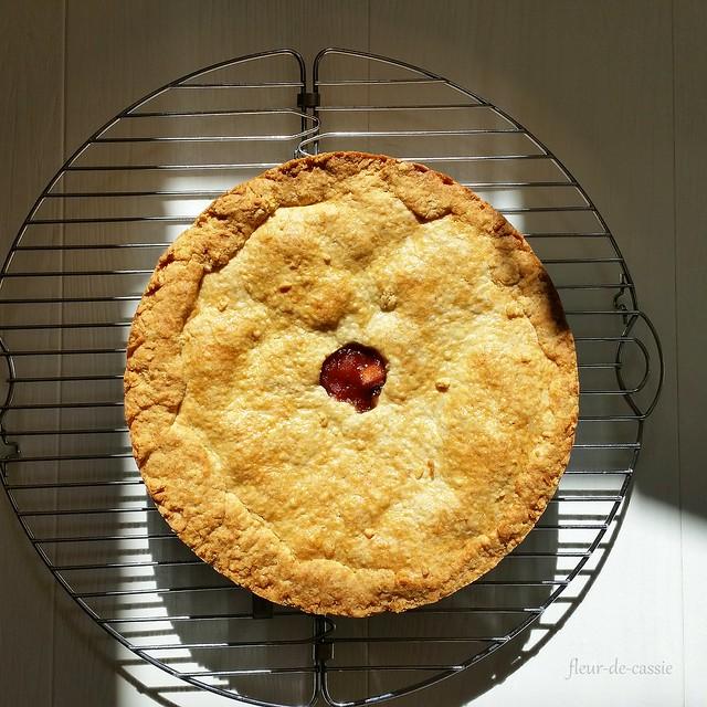 баскский пирог Дори 1