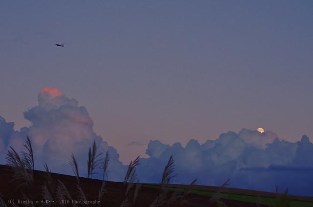 月の出とススキとヒコーキ