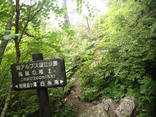 鳳凰山 ドンドコ沢 鳳凰の滝分岐