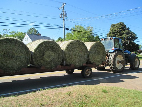 Bales of hay on the Cavendish Road  #pei #rustico #northrustico #cavendish #bales #hay