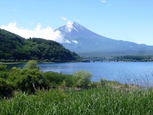 jp16-Fuji-Kawaguchiko-Nord-Promenade (14)