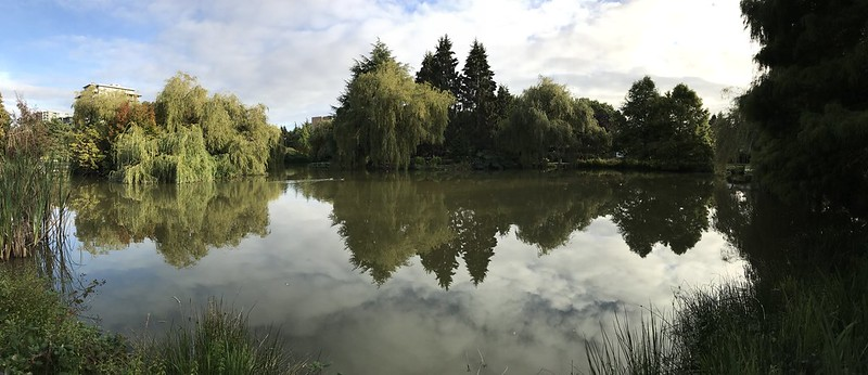 Panorama Stitch (iPhone 7 Plus)